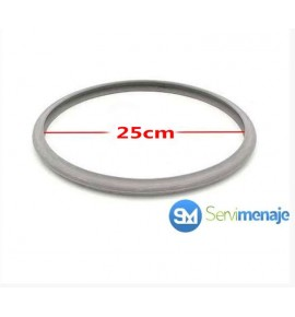 Seal pot Fagor Original 22cm
