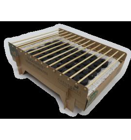 Casusgrill Barbecue Biodegradable single-Use